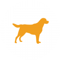 pet-accommodation-icon